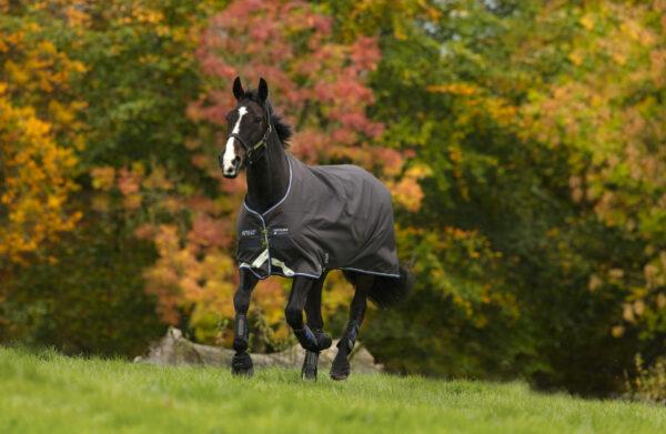 Horseware Amigo12 Pony