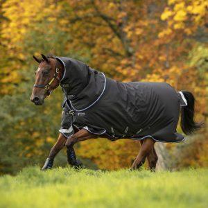 Horseware Amigo Bravo12