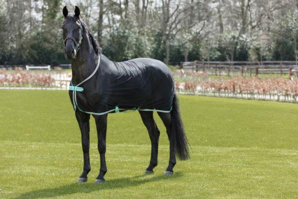 Horseware Amigo Net Cooler