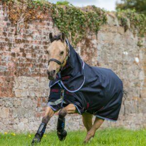 Horseware Amigo Pony