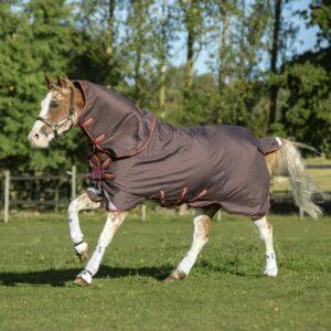 Horseware Amigo Bravo12 Plus