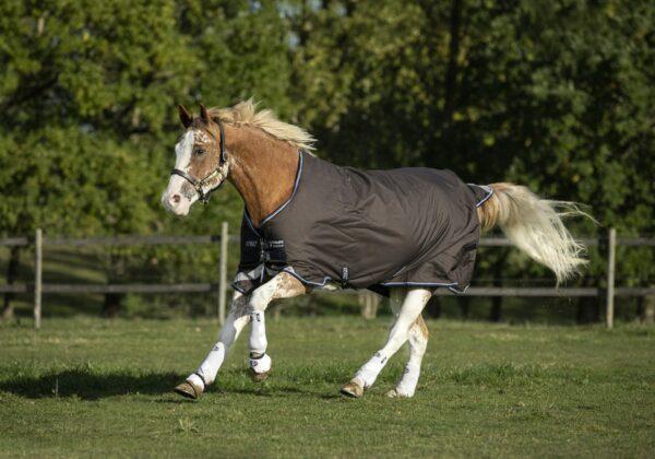 Horseware Amigo Bravo12 Plus Turnout