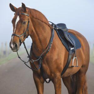 Horseware Rambo Micklem