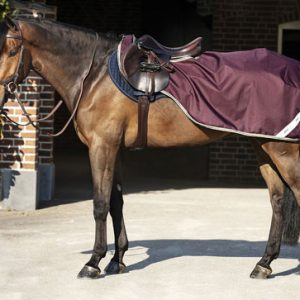 Horseware Amigo Ripstop C0mpetion Sheet